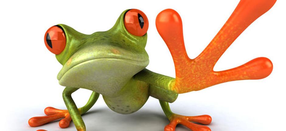 frog3reasons2